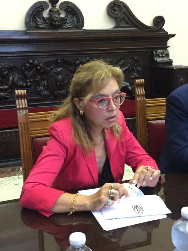 """Elezioni Barcellona PG. On. Bucalo: """"Fallito progetto unitario, adesso sostegno a Ilenia Torre"""""""