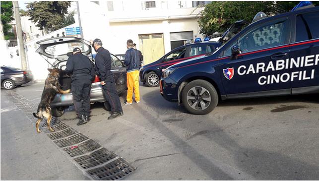 Mirto. Arrestato dai Carabinieri per detenzione di droga e furto di energia elettrica