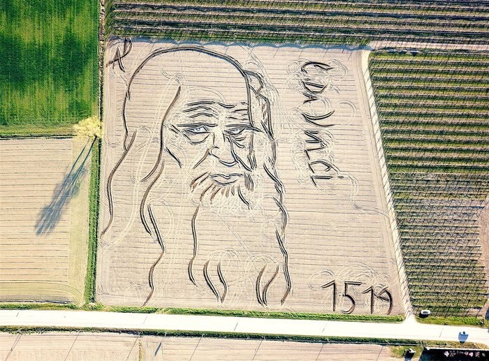 Il ritratto di Leonardo dell'artista Dario Gambarin su un terrenodi 27 mila metri quadrati