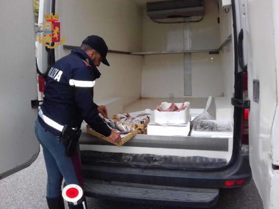 Patti. Polizia sequestra 50 Kg di pesce pericoloso per la salute pubblica