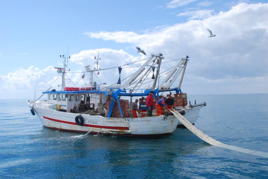 """Regione. Pesca, Pullara:""""Nuova legge è strumento per uscire dalla crisi"""""""