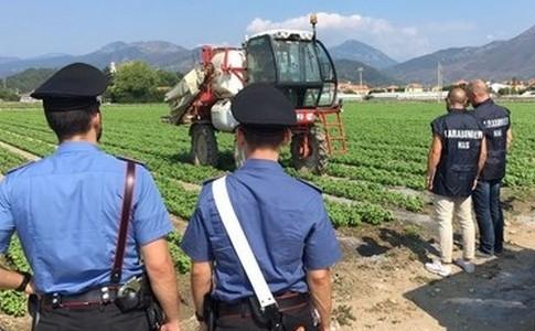 Messina e provincia. Bilancio 'nero' dai controlli sul lavoro: 14 denunce, 25 lavoratori in nero e sanzioni per oltre 130mila euro