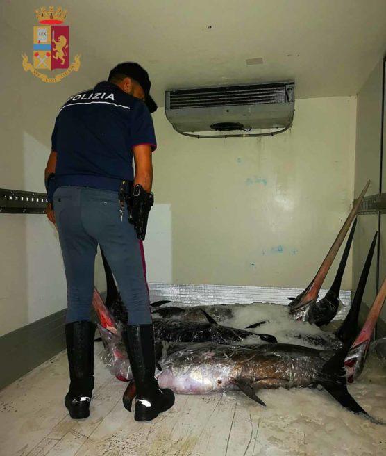 Polizia sequestra 950 Kg di pesce in cattivo stato di conservazione