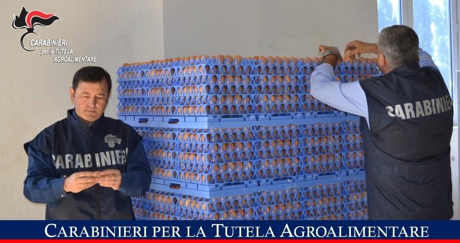 Operazione 'Tuorlo', sequestrate uova per assenza di rintracciabilità: 12mila euro in sanzioni