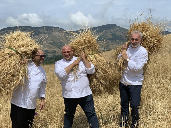 #Eccellenza Nasce primo pane dai grani antichi siciliani, seminati da Ambasciatori del Gusto Arena, Freni e Caliri
