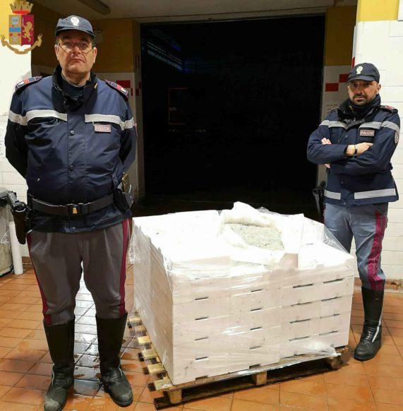 Polizia sequestra novellame e sottopone a fermo mezzo adibito al trasporto di alimenti