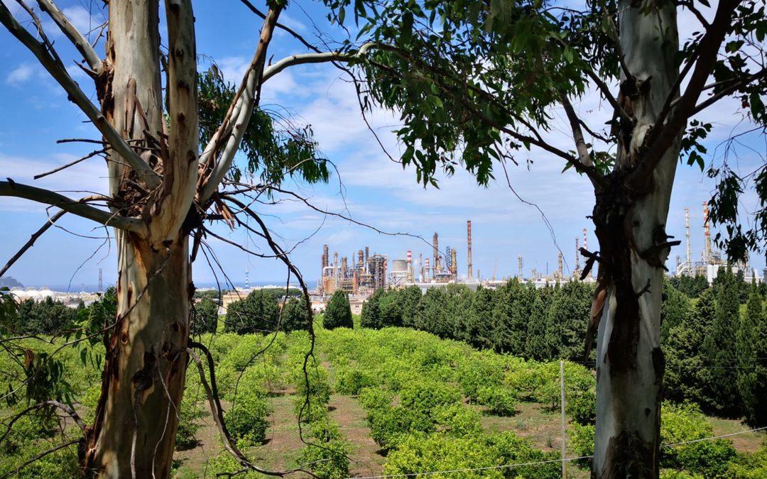 """Sicilia. """"Grave attacco alla tutela del paesaggio"""", grido d'allarme di Associazione e Comitati ambientalisti: """"Pericolo DDL all'ARS"""""""