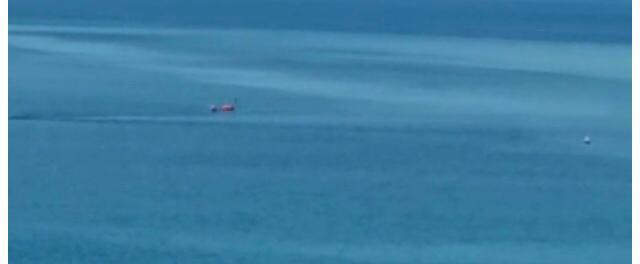 Milazzo. Al Tono spettacolare visione di uno squalo
