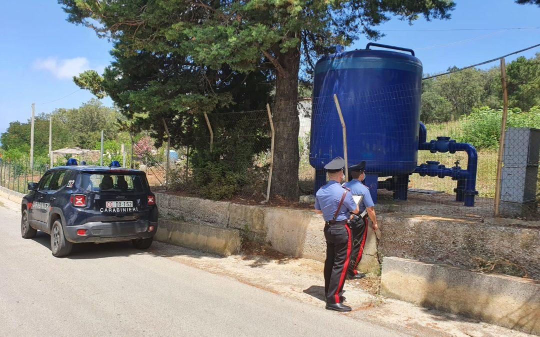 Reati ambientali nell'area del Parco dei Nebrodi, 4 denunciati